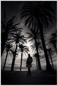 Nanine dans les palmiers