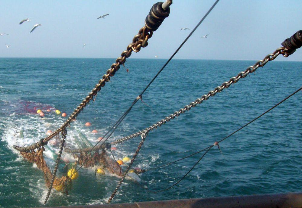 Le chalut pour pêcher le hareng, le maquereau que vous retrouvez sur les étals des poissonneries