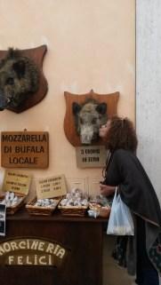 Loving the boar