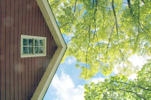 Jedediah Higgins House, Princeton, NJ, Exterior glory color, cc-by lemasney