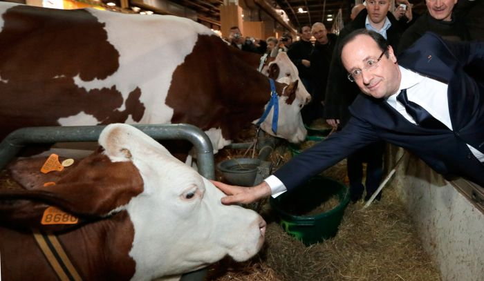 hollande salon de l'agriculture