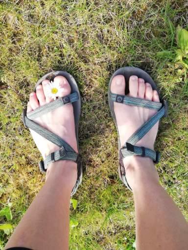 Sandales minimalistes Z-Trail Xero Shoes -Esthétisme