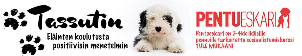 Tassutin- Eläinten koulutusta positiivisin menetelmin