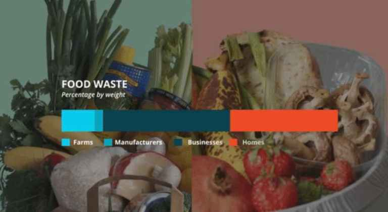 Fight food wastage with the fridgeEYE App