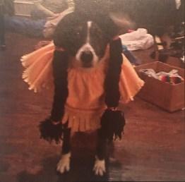 Pepper costume