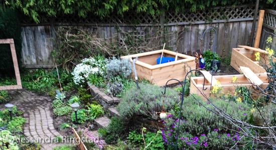 garden box-8