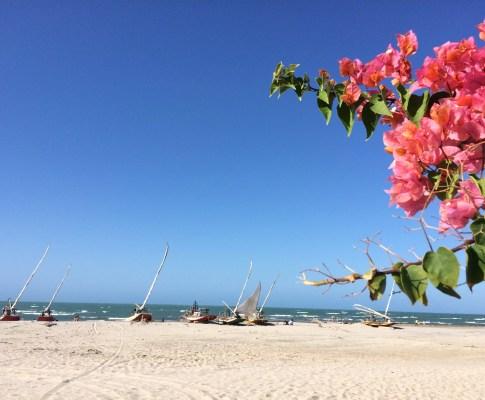 Le rêve de Laurence : S'installer dans le Nordeste au Brésil
