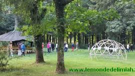 journée portes ouvertes Ecoute Holistique Sensitive, formation en développement personnel énergétique roue elfique