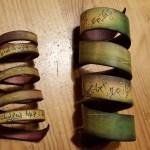bracelets elfiques crées par Carole Elimiah