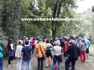 chants des arbres et roue celtique Florence Laporte