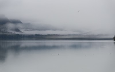 ALASKA – D'Anchorage à Haines (2nde partie)