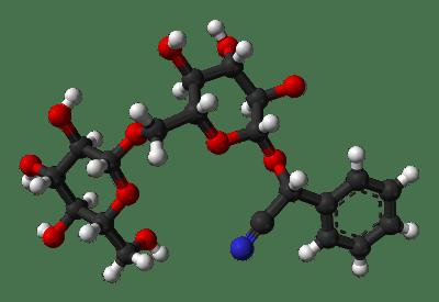 Amygdaline : disaccharide à gauche _ Noyau aromatique et liaison CN (en bleu)