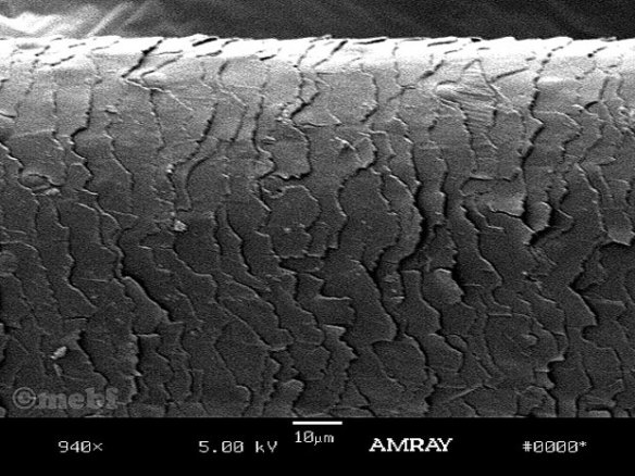 archet_microscope