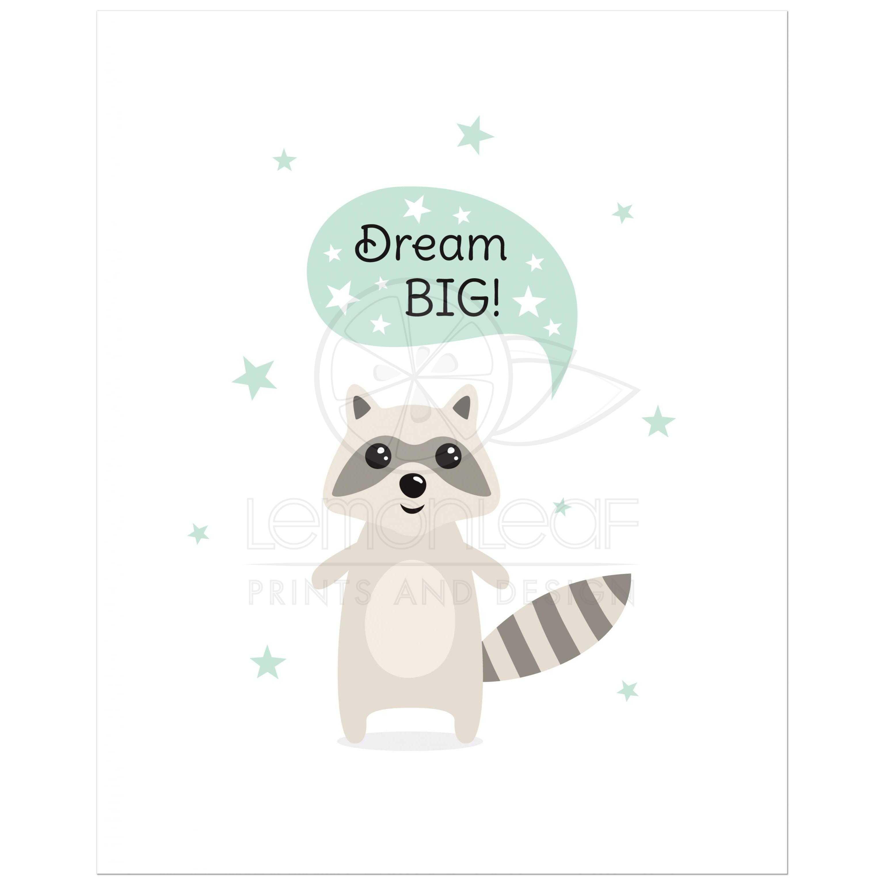 dream big cute raccoon