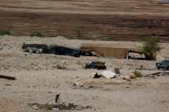 Bedouin camp Dead Sea