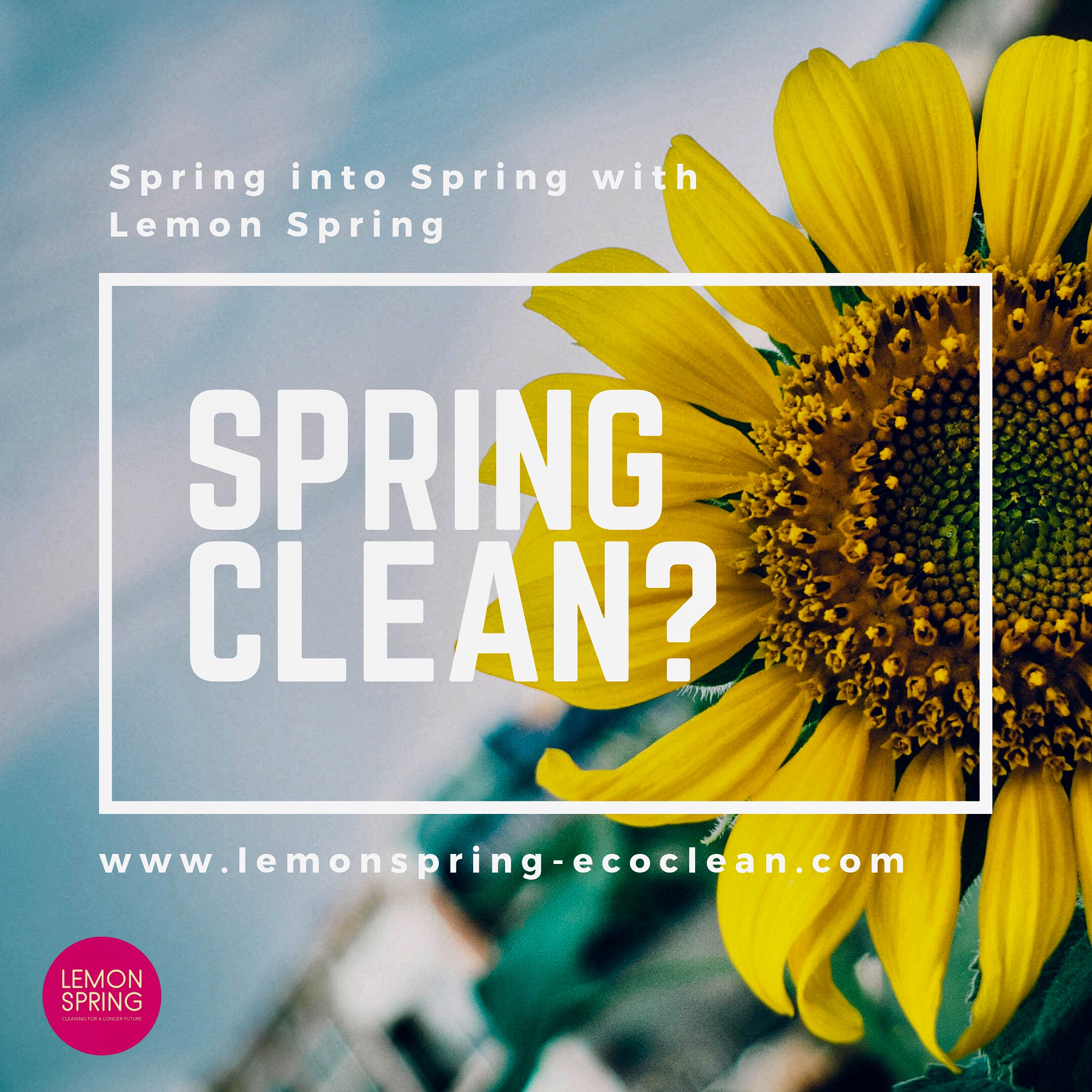 Lemon Spring - Eco Friendly Cleaning