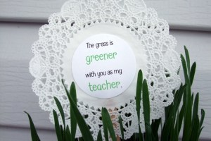 The Grass is Greener with You as my Teacher.