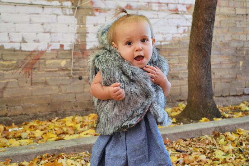 Fur Vest + five and ten designs E-Book review