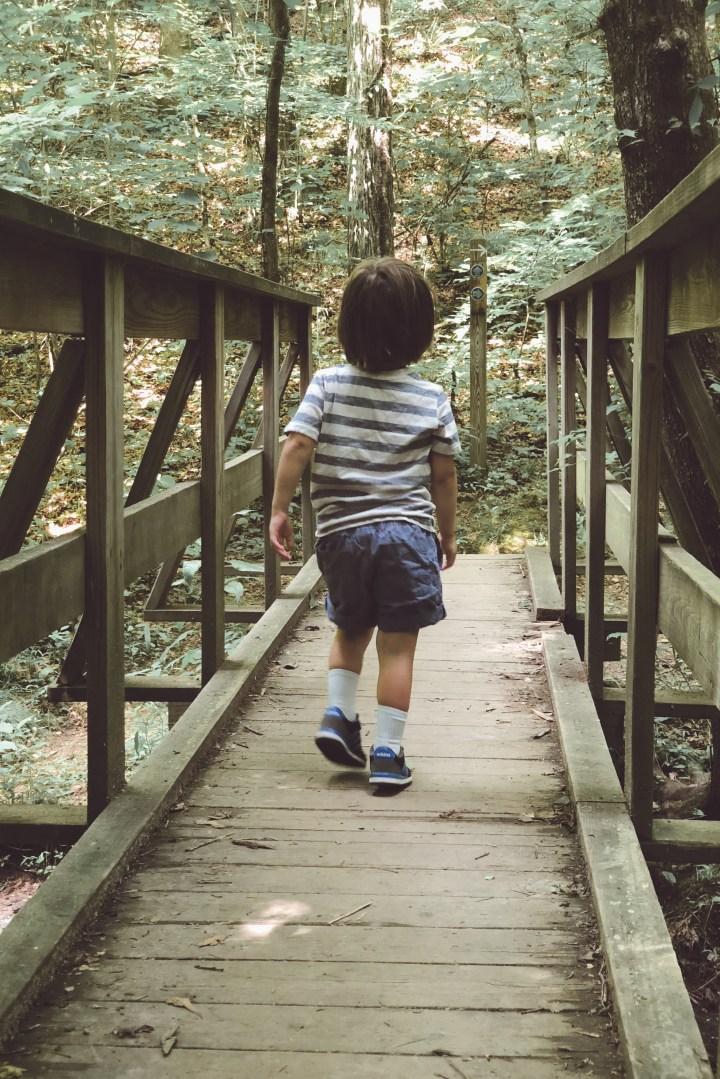 kid friendly hike near nashville
