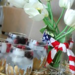 Happy 4th of July & a cocktail recipe
