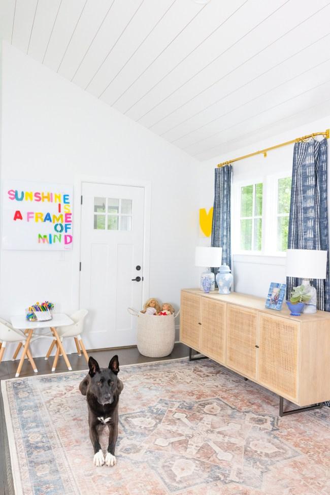 Family Friendly Playroom Design