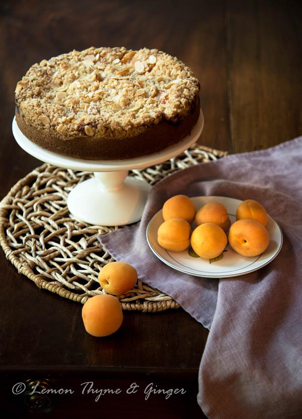 Apricot Streusel Cake recipe.