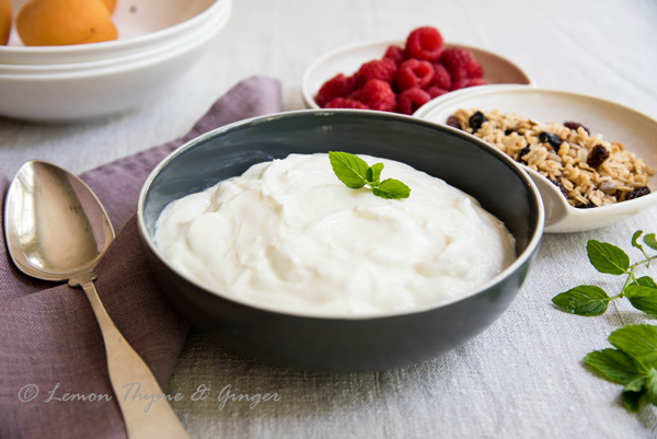 Creamy Homemade Yogurt recipe.