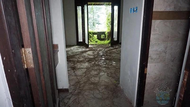 La natura si riprende l'hotel abbandonato