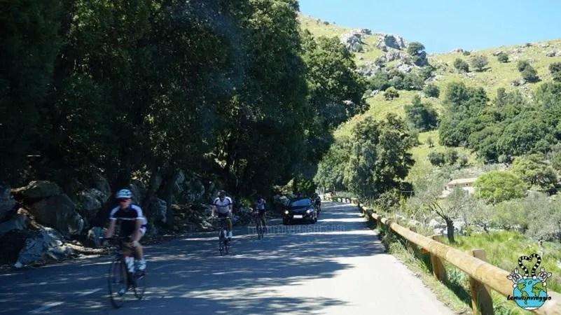 ciclisti lungo le strade a Maiorca