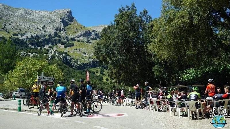 assembramento di ciclisti per le strade di Maiorca