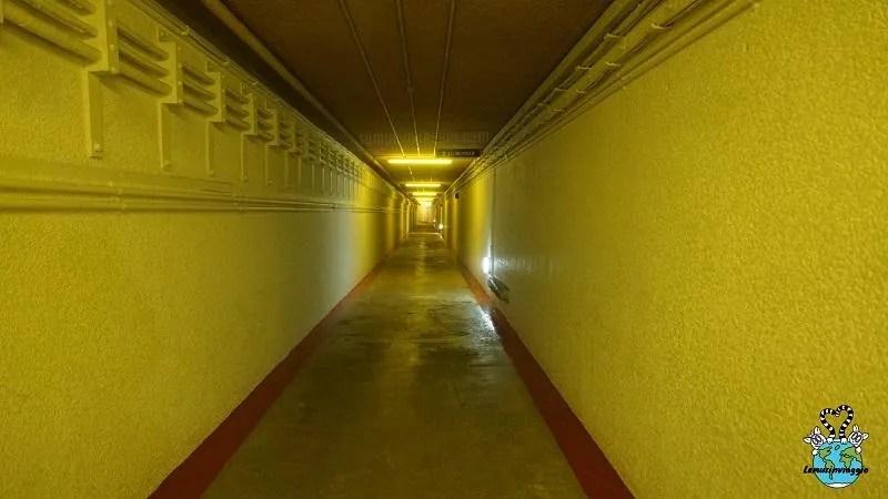 Il tunnel porta all'interno del bunker segreto di Scozia