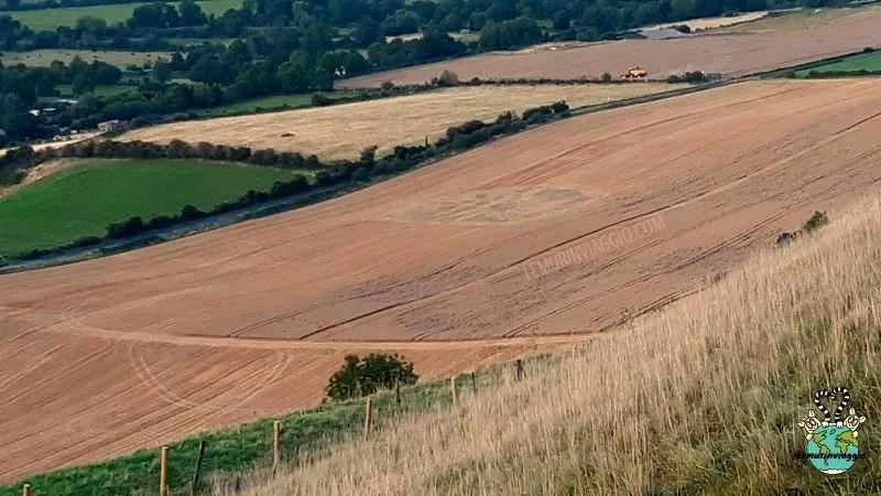 Cerchi nel grano a Westbury
