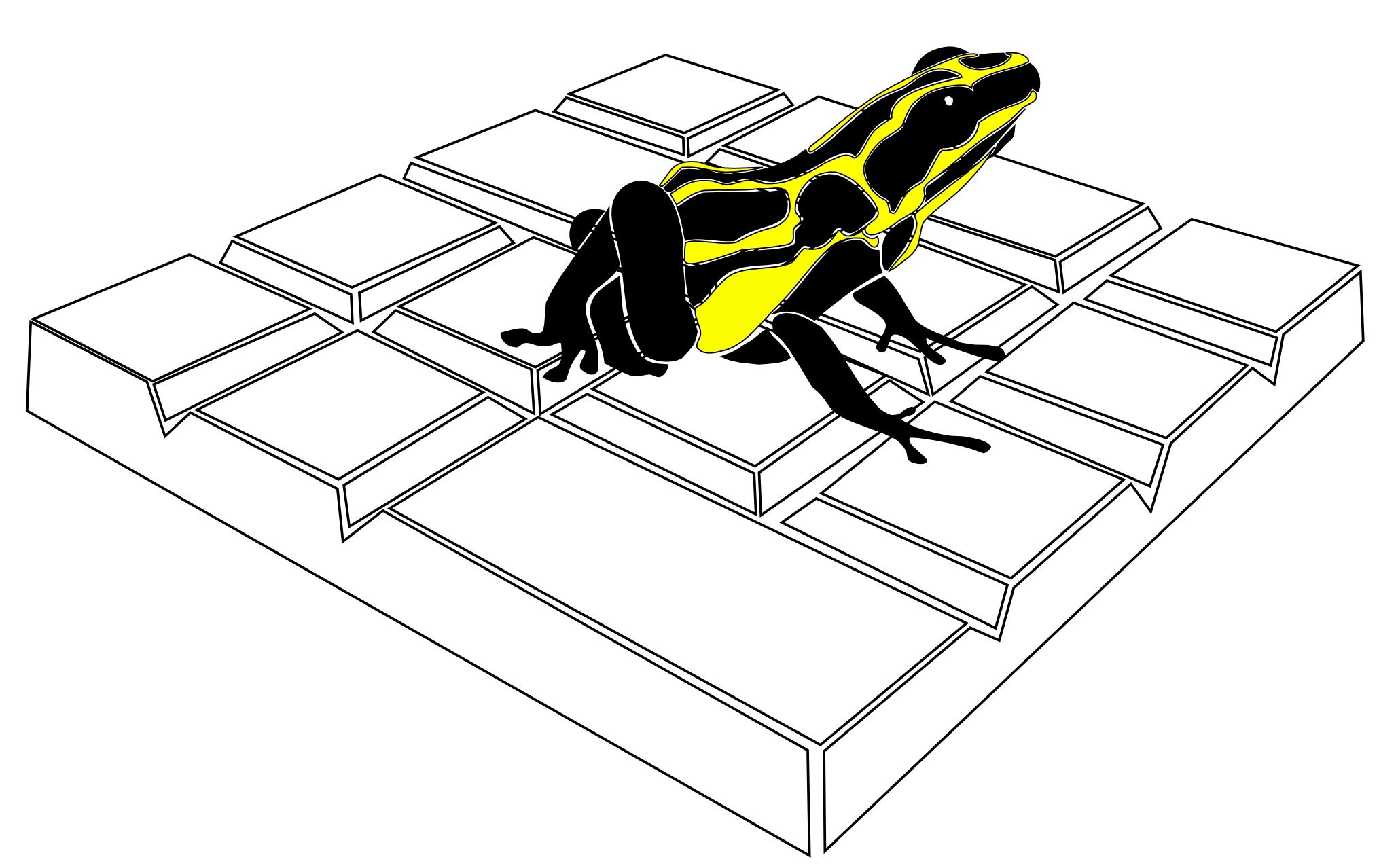 Frog-bw-half