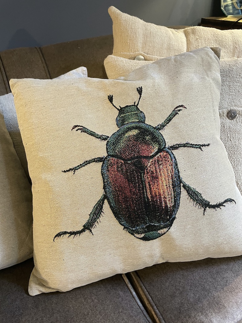 cuscino scarabeo