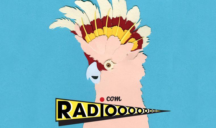 Webradio la radiooooo