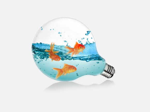 Lightbulb and Water Effect