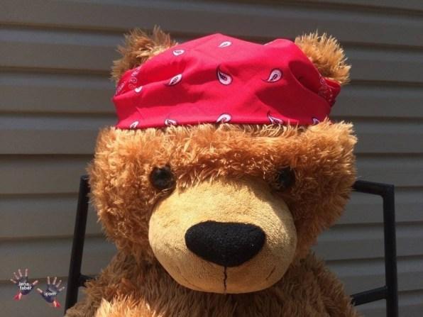 Bear Bear was given bandana