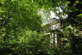 Wer den Vortexgarten besucht, entflieht für ein paar Augenblicke dem Alltag. Unzählige Bäume und Gewächse schirmen den Ort von der Außenwelt ab.