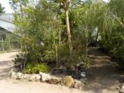 10-botanischergarten-pfad-gruenerbeton