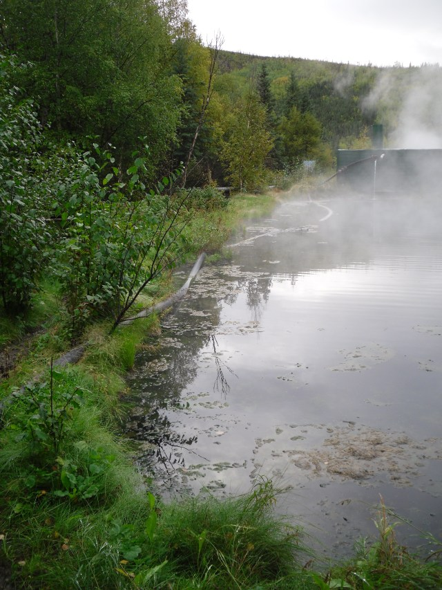 Hot springs shore