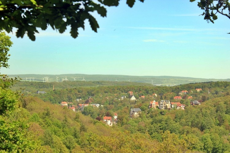 Thuringian Forest View