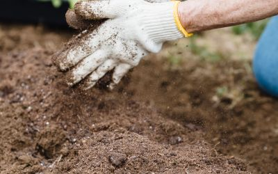 How To: Compost At Home