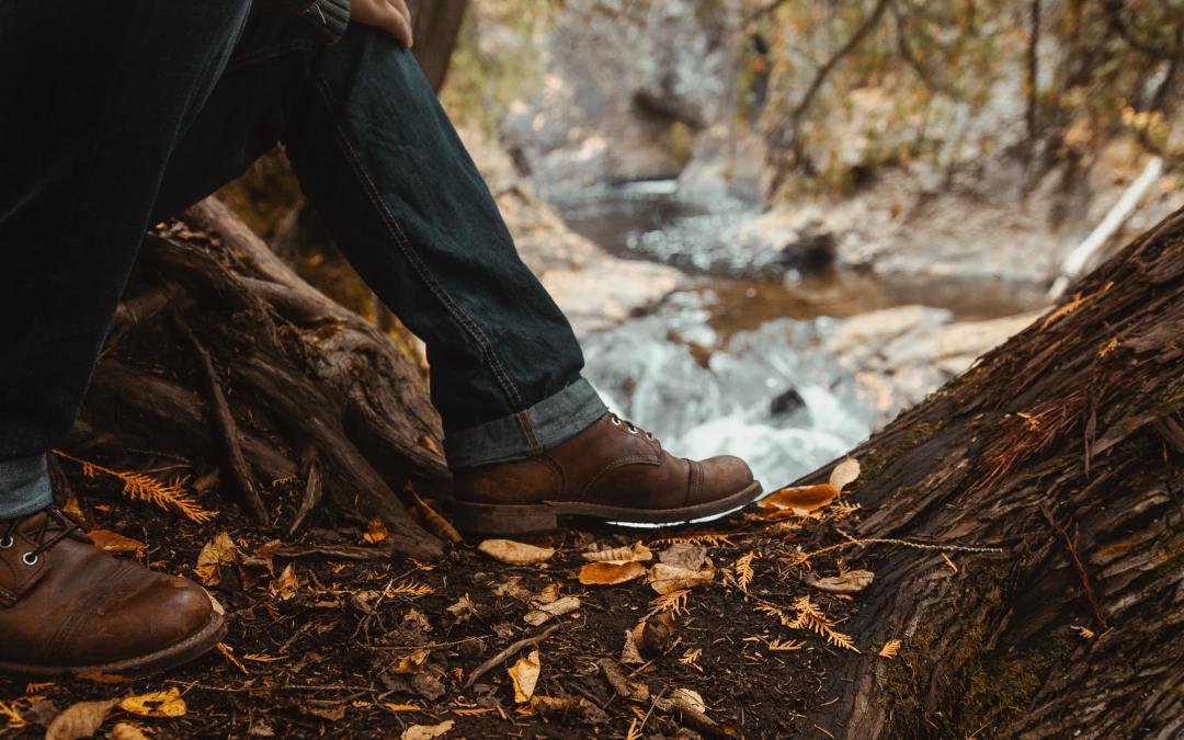 5 Ways To Fall Into Sustainability This Season!