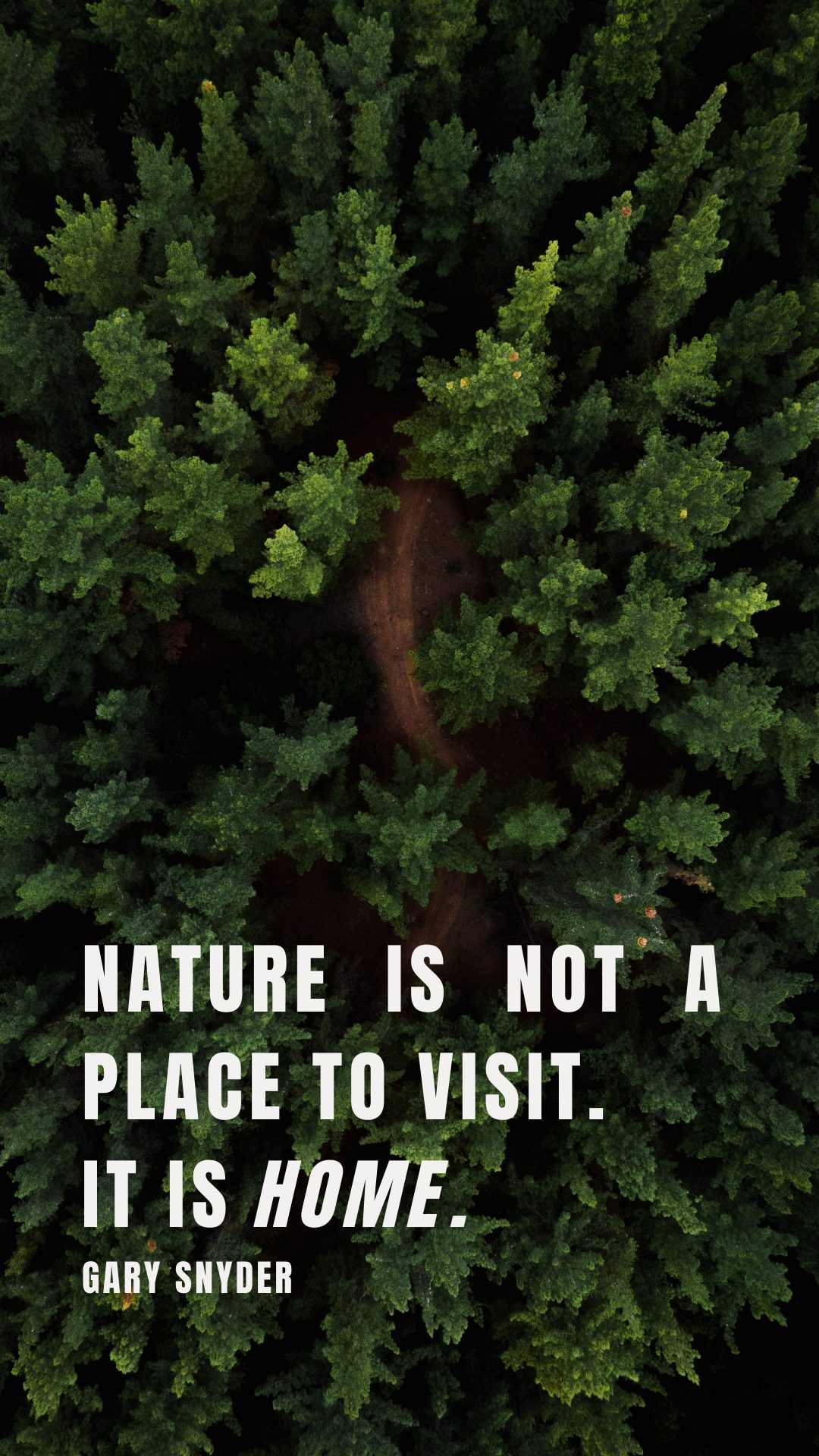 nature is home quote