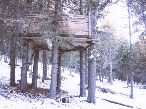 badass tree house in the snow