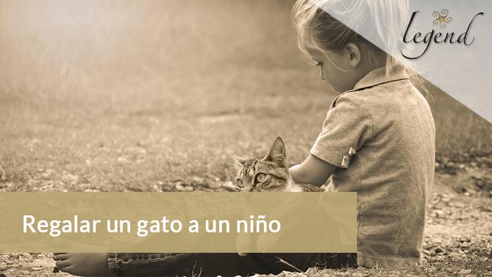 Regalar un gato a un niño