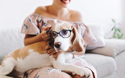 📻 ¿Humanizas a tu mascota? – Lenda en Radio Voz