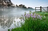 misty-river