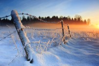 winter-sunset
