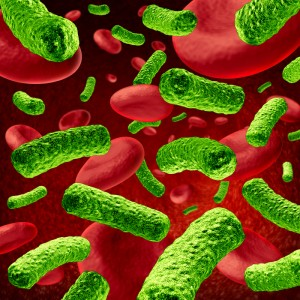 http://www.dreamstime.com/stock-photo-bacteria-blood-infection-image23708840